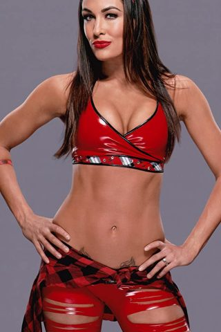 Brie Bella 4