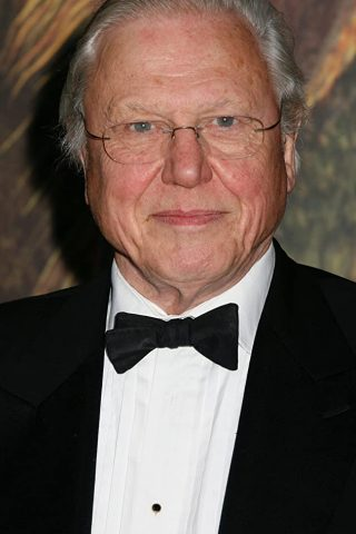 David Attenborough 4