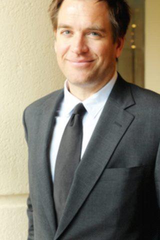 Michael Weatherly 2
