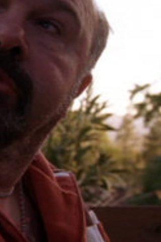 Robert Costanzo 1